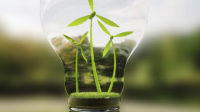 How to Save Money While Doing Green IT